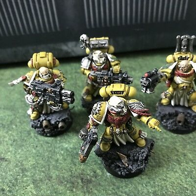 imperial fists Sternguard Veterans