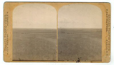 Haynes Stereoview - Canada Pacific Railway - Grand Valley Towards Brandon