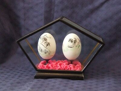 Chinese Egg Hand Painted 'Cats in a tree' in Wooden Glass Case. VCG