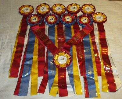 "HUGE Horse SHOW Awards/Ribbons LOT - 4 Champion & 7 Reserve- 34"" Long - LOOK!"