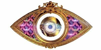 CELEBRITY BIG BROTHER 13 UK 2014 DVD (Extended Highlights)