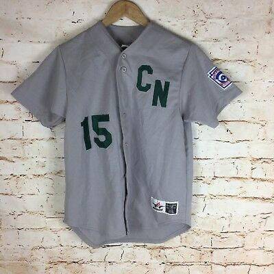 Alleson Athletic Little League Baseball Jersey CN 15 Sz Large Youth