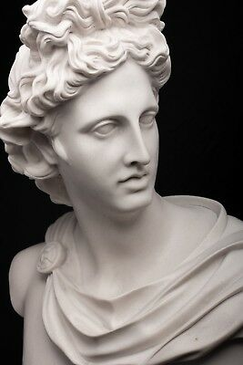 Marble Bust of Apollo Belvedere, Classical Sculpture. Art, Gift, Ornament.
