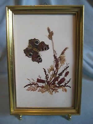 """VTG BUTTERFLY Dried Flowers Picture Frame Swiss~Reichlin 7"""" x 5"""""""