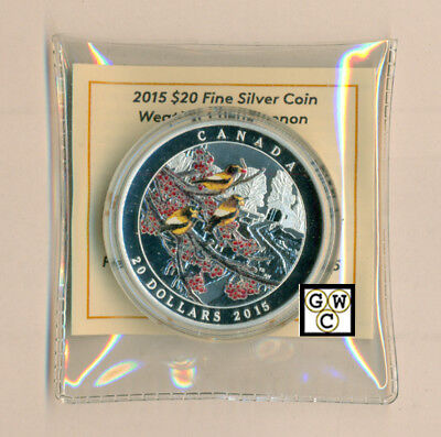 2015 'Winter Freeze -Weather Phenomenon'Prf $20 Silver 1oz. Fine Coin(17502)OOAK