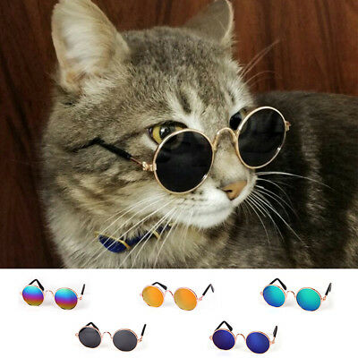 US Small Cat Dog Sunglasses Glasses Costume Pet Toy Kitten Outfit Clothes Funny