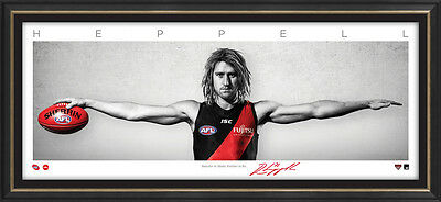 Dyson Heppell Signed Essendon Captain Mini Wings Official AFL Print Framed