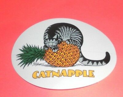 NEW KLIBAN BAD CAT DECAL STICKER CRAZY SHIRTS CATNAPPLE STICKERS Pinneapple