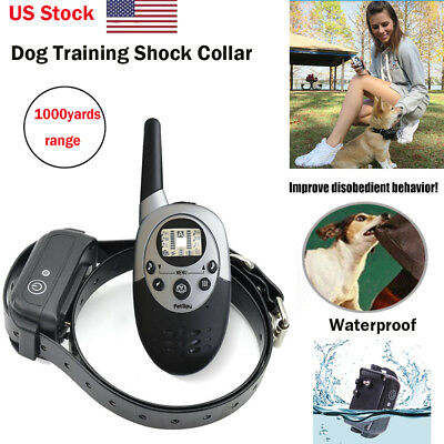 Petrainer Electric Dog Training Collar Rechargeable Shock Collar With LCD Remote