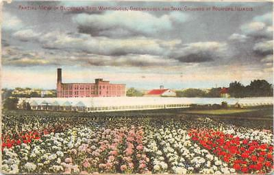 Buckbee's Seed Warehouses & Greenhouses, Rockford, IL 1912 Vintage Trade Card