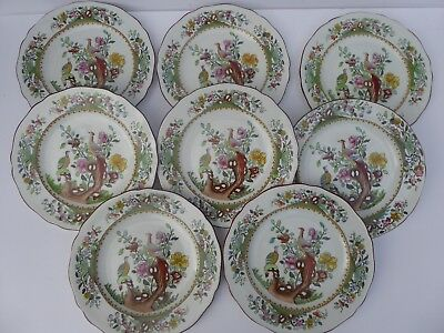 """8 x Waring and Gillow Copeland Spode 8.75"""" Plates and a oval serving Dish"""