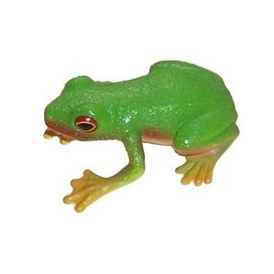 NEW Science & Nature Green Tree Frog - authenticated by Healesville Sanctuary