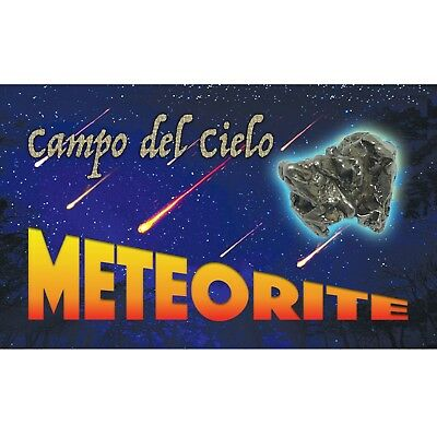 Campo del Cielo Meteorite with COA Iron Space Rock FAST FREE USA SHIPPING f4a