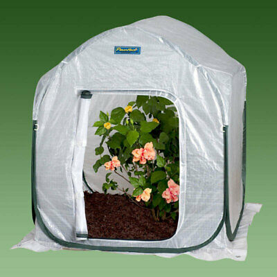 Flowerhouse PlantHouse 4 Ft. W x 4 Ft. D Mini Greenhouse