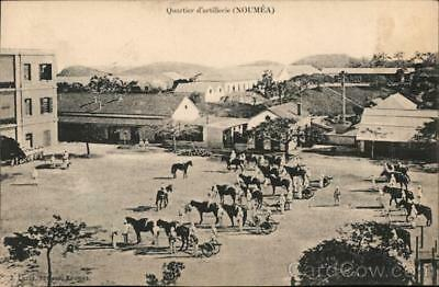 New Caledonia Noumea Army cavalry with horses and cannons arranged in a line