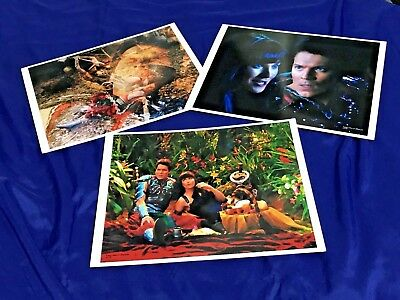 RARE Limited Edition Xena and Lucifer by Anne C. Ferguson Art Photo LOT of 3 ART