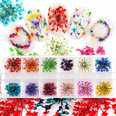 AU 12 Colors DIY Nail Art Dried Flowers 3D Flower Decoration Nails Stickers Tips