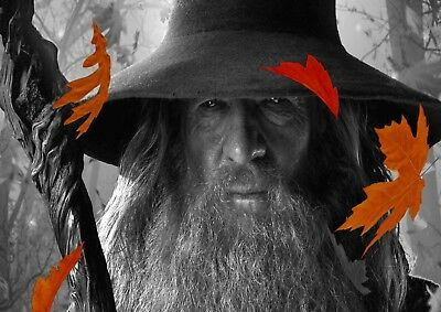 Gandalf The Lord Of The Rings 3 Types Photo Poster Print ONLY Wall Art A4