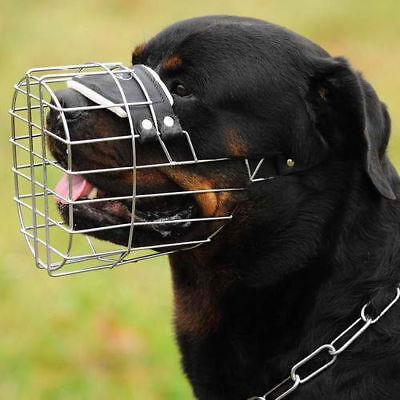 DT Freedom All Day Dog Muzzle Allows Pant Bark Drink