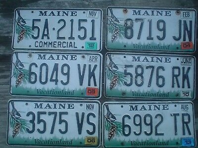 Maine chickadee expired BULK LOT License Plate 6 plates