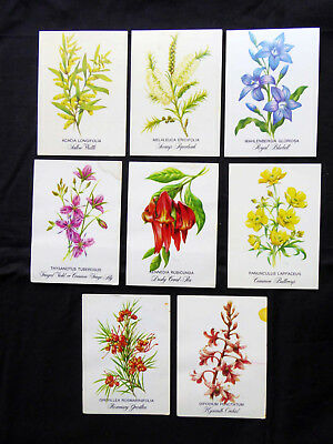 Vintage Tuckfield Teas Australian Wildflowers by Deirdre Hunt Cards x 8