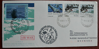 New Zealand Ross seals Robben Antarctic Antarktis Antarctica Polar Antartica NZ