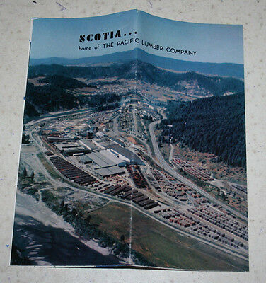 Vintage Color Brochure Pamphlet Scotia Home of the Pacific Lumber Company CA