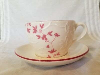 Starbucks 2006 cup and Saucer BEAUTIFUL