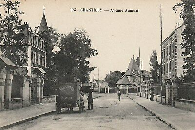 CPA 60 (Oise) CHANTILLY / AVENUE AUMONT  / ANIMEE