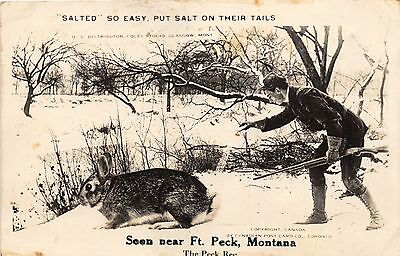 FT PECK MT HUNTER PUTS SALT ON RABBIT TAIL EXAGGERATED REAL PHOTO POSTCARD 1910s