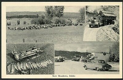 NEW MEADOWS IDAHO MULTI VIEW circa 1940s Postcard
