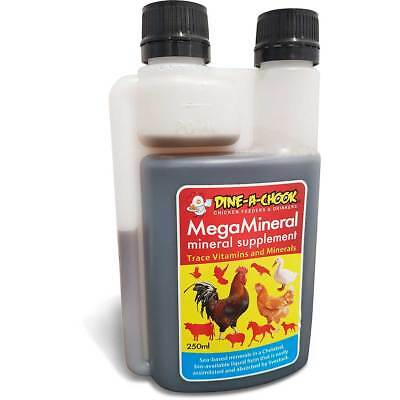 Poultry Nutrition · Vitamins and Minerals for Chicken · Increase Overall Health