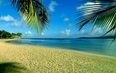 1p Auction Beautiful Beach HD Wallpaper Image Penny Collection Free No Reserve