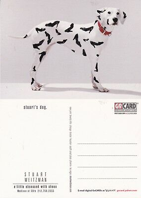 f5457c593915 STUART'S DOG STUART WEITZMAN SHOES UNUSED ADVERTISING COLOUR POSTCARD ...