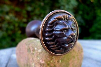 Vintage beautiful lion design door pull knobs, perfect for project decorative.