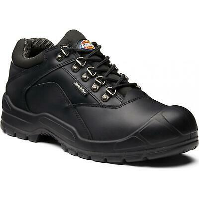 Dickies Norden II Safety Work Shoe Trainer FA9006S - NEW STYLE