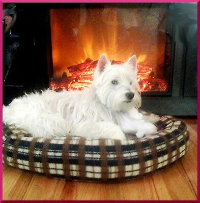 Wonderful DIGITAL PHOTOS of a West Highland Terrier FREE SHIPPING