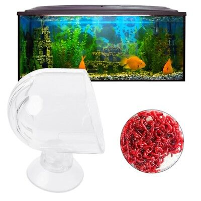 Glass Aquarium Feed Suction Cups Fish Food Brine Shrimp Eggs Red Worms Fish Tank