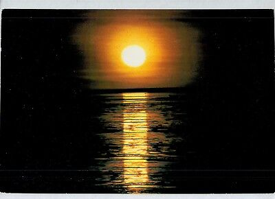 D1551cgt Australia WA Broome Staircase to the moon Indrisie postcard