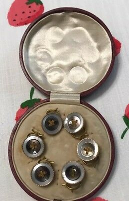 Antique Victorian Mother Of Pearl 6 Button Set With Box