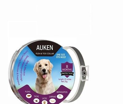 Flea and Tick Collar for Pet Dogs and Cats-8 Month Protection & Prevention