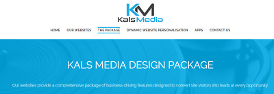 Responsive website with up to 100 products - design and setup, analytics & power
