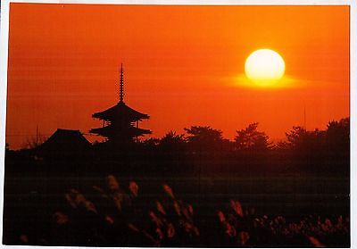 B6908cgt Japan Pagoda at Sunset postcard