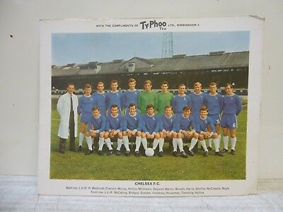 "Chelsea - Vintage 1960's Typhoo Tea Collectable Team Photograph 10"" x 8"""