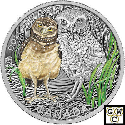 2015 Burrowing Owl-Baby Animals Colorized Prf $20 Silver 1oz .9999 Fine(15286)NT