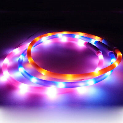USB Rechargeable LED Dog Pet Collar Flashing Luminous Safety Light Up Multicolor