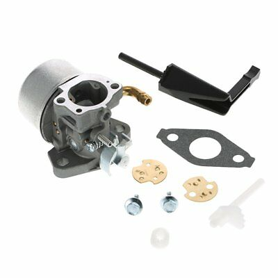 Carburetor Carb Repair Replacement for MPN 798653 697354 790290 791077 698860 ND