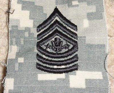 U.s.army Sergeant Major Of The Army, Acu Hat Sew On Insignia