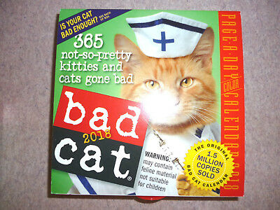 2018 Bad Cat Page-a-Day Calendar  Collectible  NEW in Box