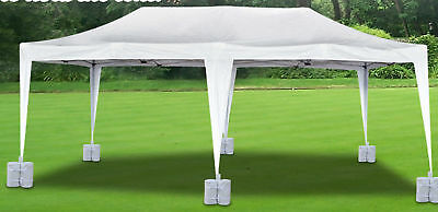 Strong Camel Wedding Party 20 Ft. W X 10 Ft. D Steel Pop-Up Canopy